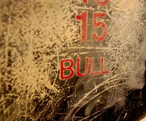 bull-thumb